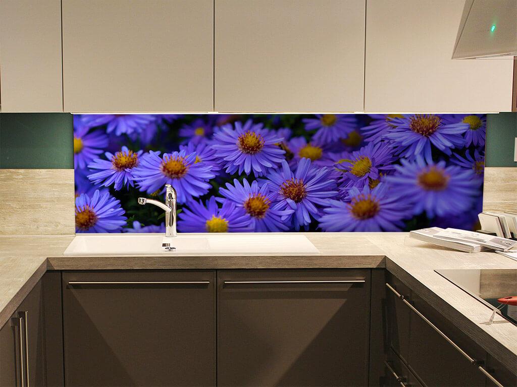 Violete-simulare-8739