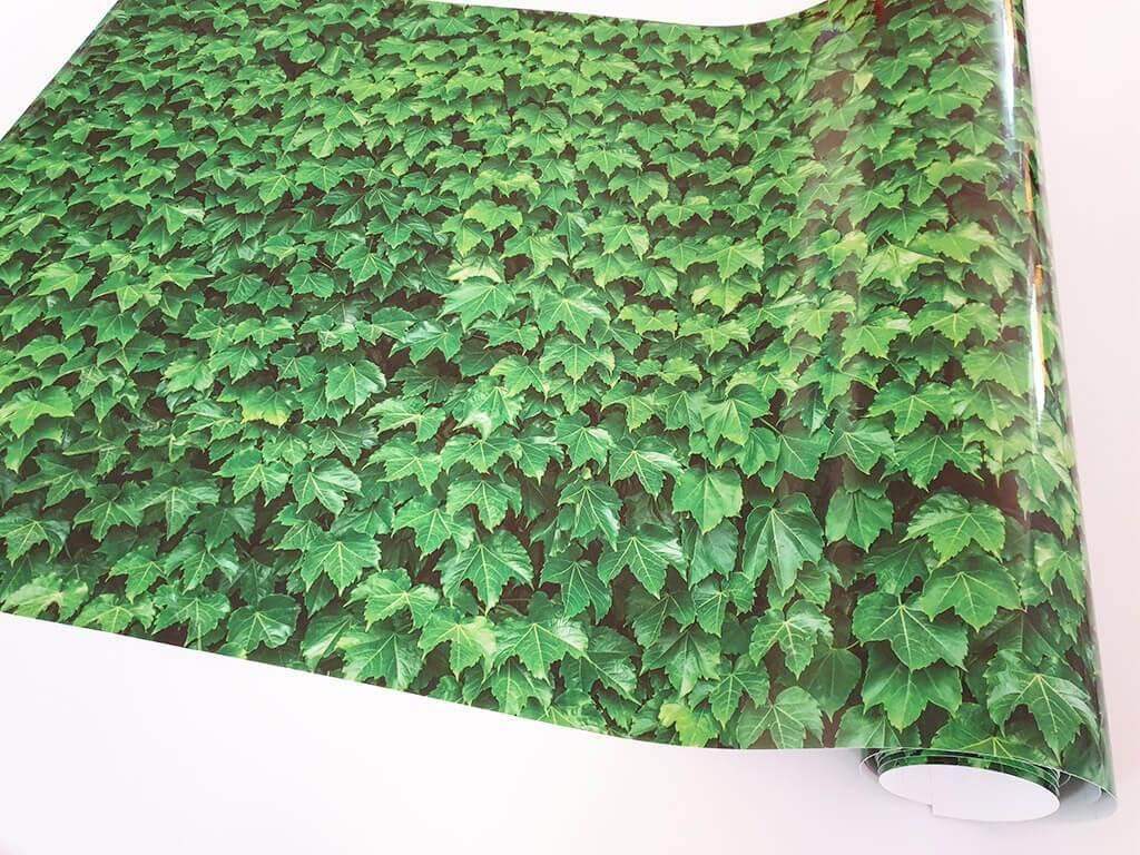 autocolant-decorativ-iedera-verde-7800