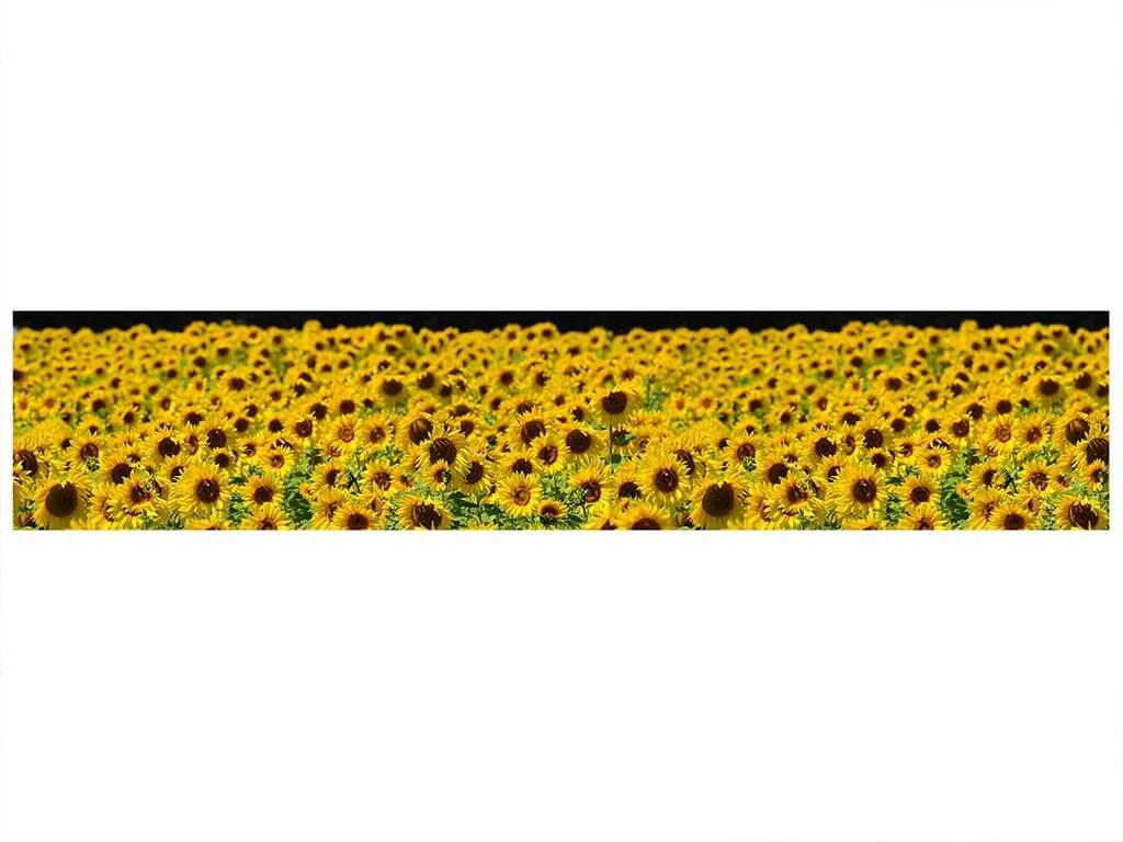 autocolant-model-floarea-soarelui-9330