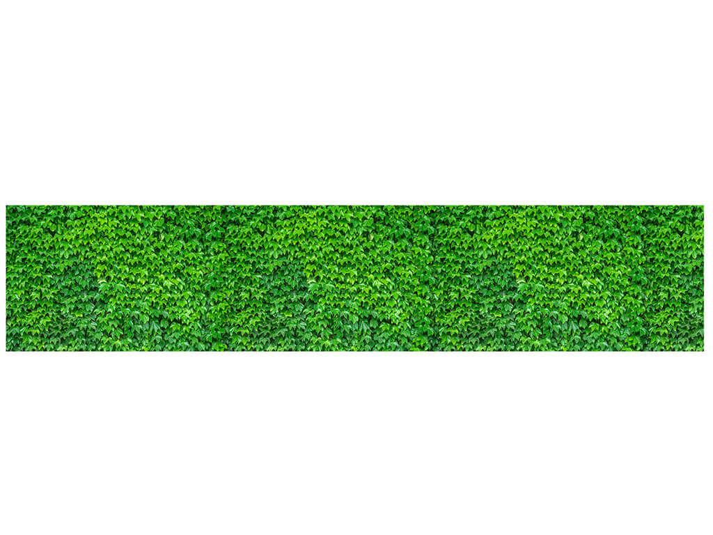 autocolant-model-iedera-verde-1652