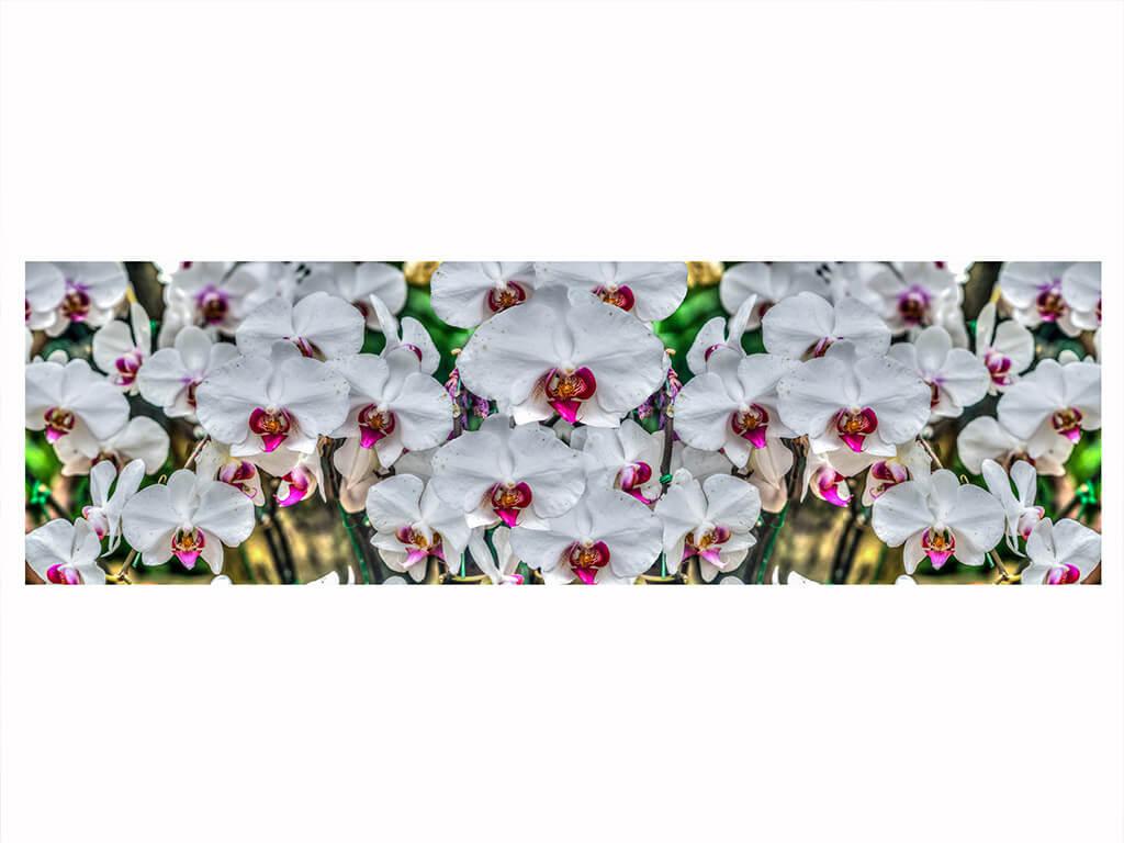 autocolant-model-orhidee-alba-9198