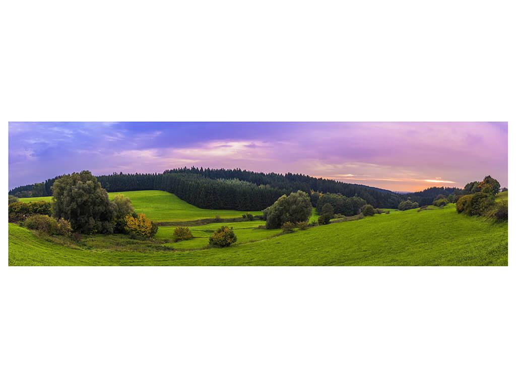 autocolant-peisaj-padure-6157
