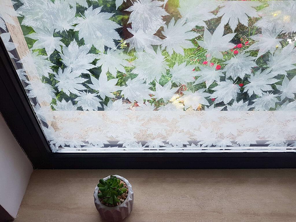 folie-geam-autoadeziva-frunze-albe-6257