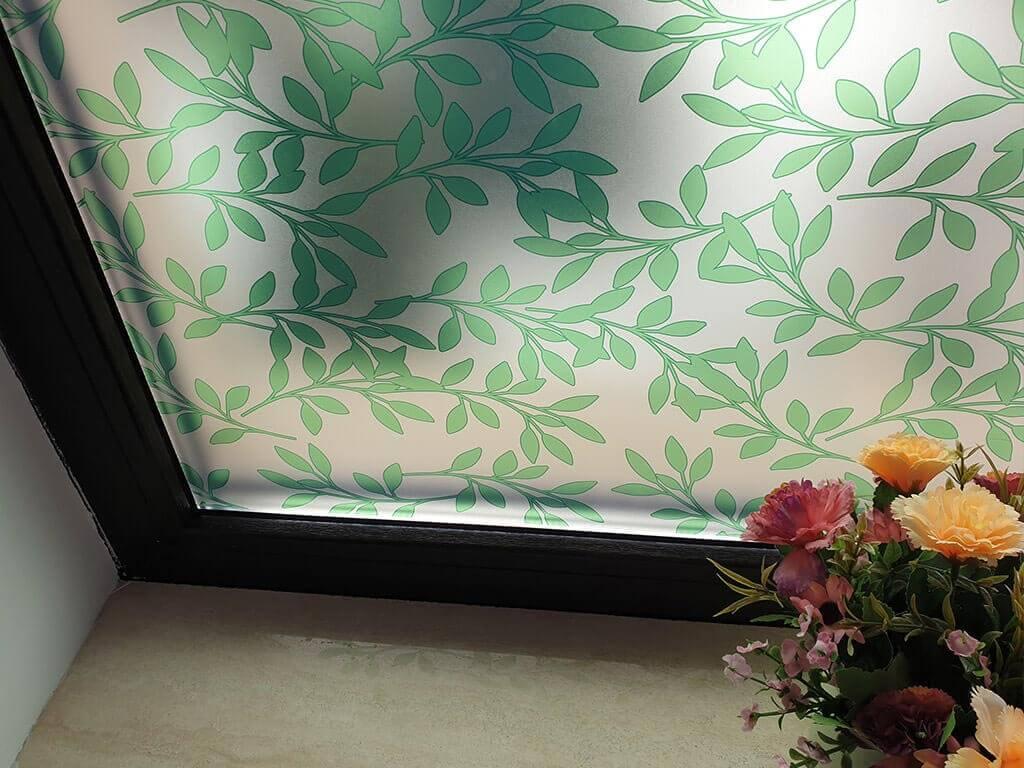 folie-sablare-frunze-palmer-5592