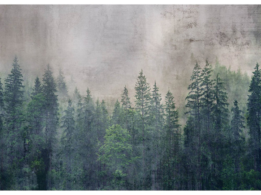 fototapet-padure-dimex-forest-abstract-2561