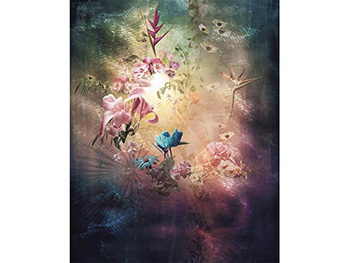 Fototapet floral Enlightenment, Komar, multicolor, 200x250 cm