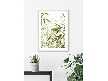 Tablou Bamboo Leaves - 40x50 cm